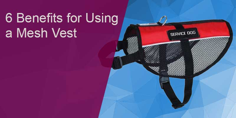 SitStay Blog: Six Benefits for Using a Mesh Vest