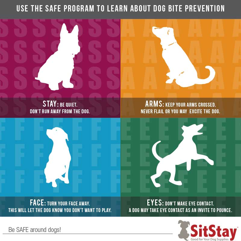 SitStay SAFE Infographic