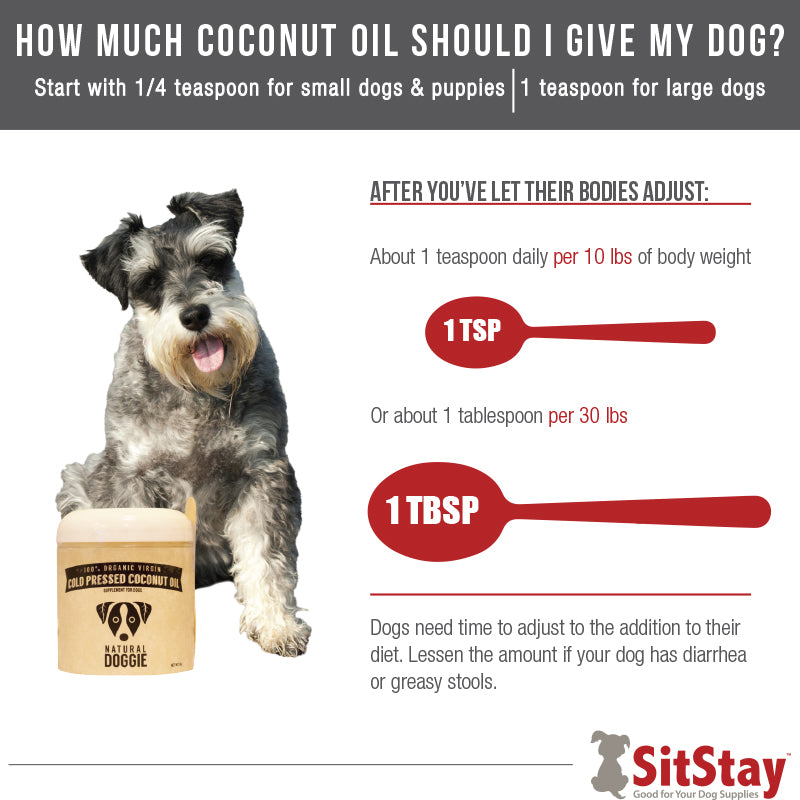 SitStay How Much Coconut Oil Should I Give My Dog?