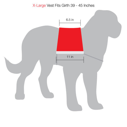 SitStay Vest Size Chart X-Large