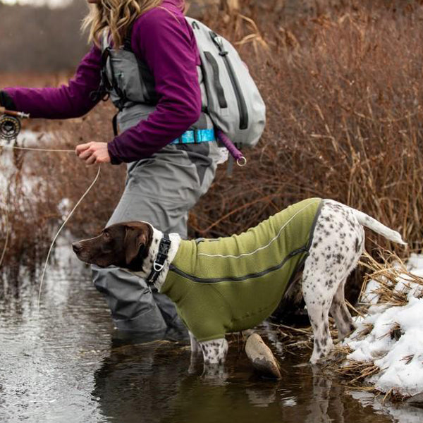 german shorthaired pointer wearing coat in water with human fishing behind her in stream