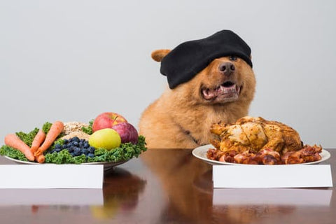 Blindfolded dog with vegetables and meat in front of them