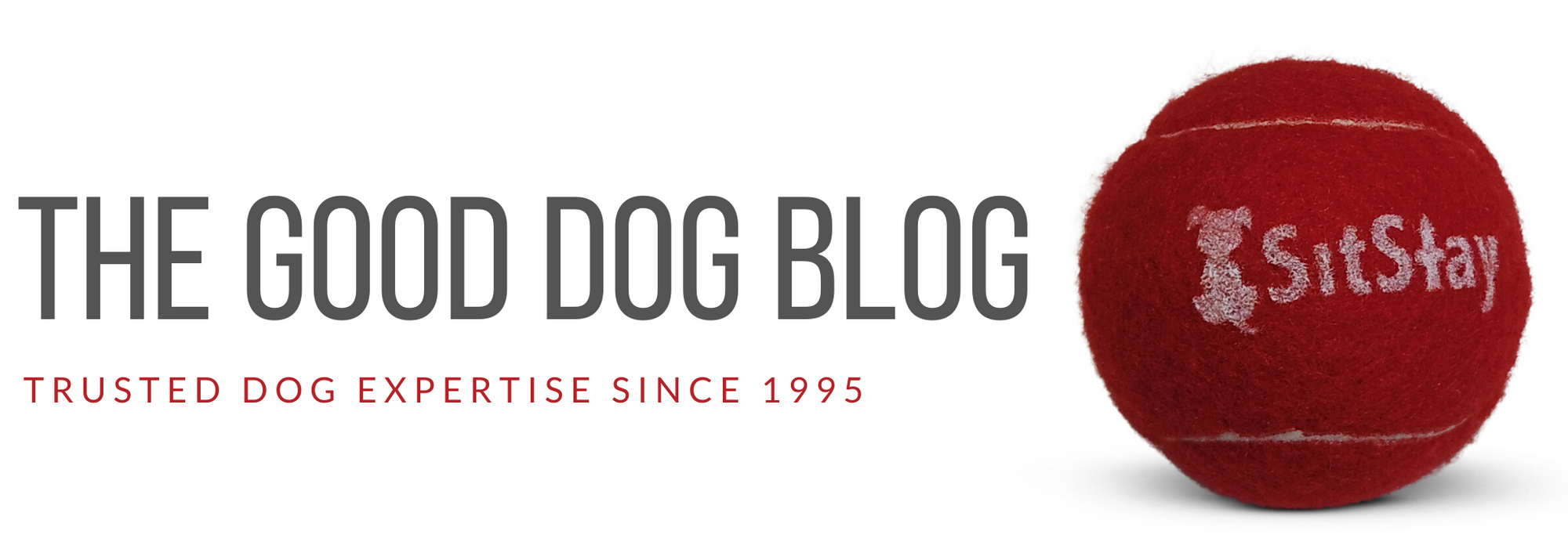 The Good Dog Blog - Trust Dog Expertise Since 1995 - SitStay