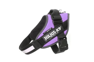 purple powerharness