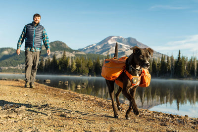 Ruffwear Approach Dog Pack - SitStay