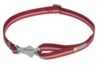 Patroller Leash easy carry