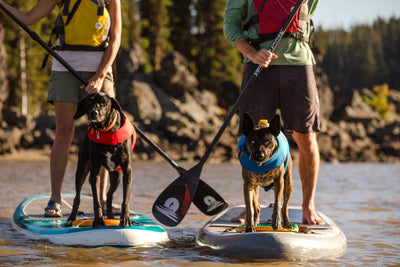 Ruffwear Float Coat™ Life Jacket
