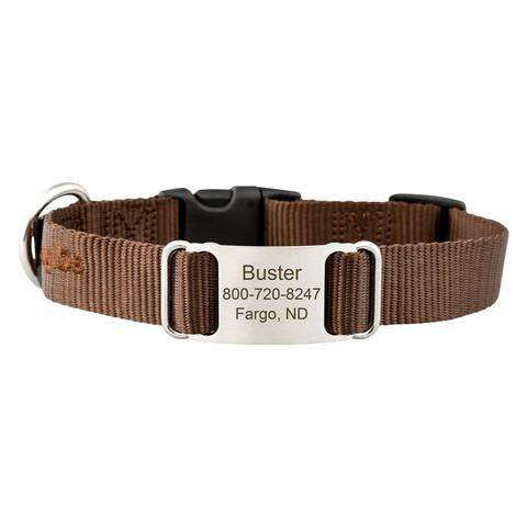 Brown dogIDs Nylon ScruffTag Personalized Dog Collars
