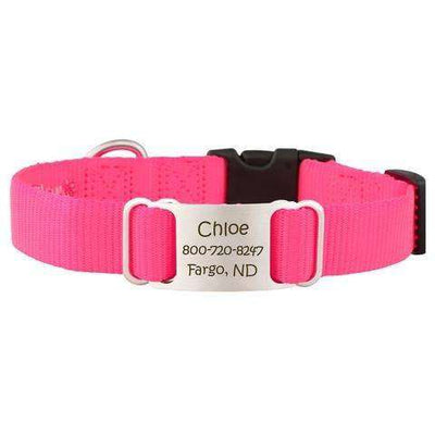 Hot Pink dogIDs Nylon ScruffTag Personalized Dog Collars - SitStay