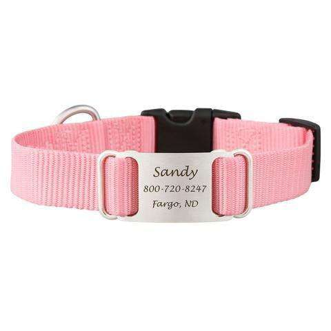 Pink dogIDs Nylon ScruffTag Personalized Dog Collars - SitStay