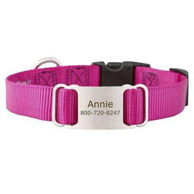 Raspberry dogIDs Nylon ScruffTag Personalized Dog Collars - SitStay