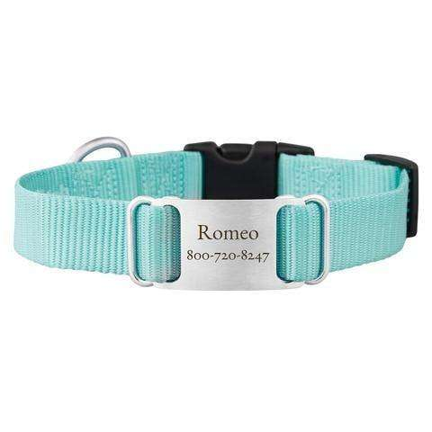 Turquoise dogIDs Nylon ScruffTag Personalized Dog Collars - SitStay