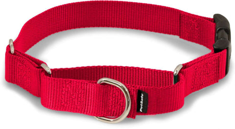 Martingale Collar with Quick Snap Buckle by PetSafe - SitStay