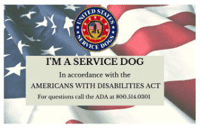Service Dog Definition & ADA Guidelines 25 Cards