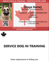 SDIT Dog ID Card