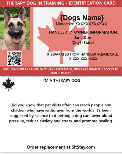 TDIT Dog ID Card
