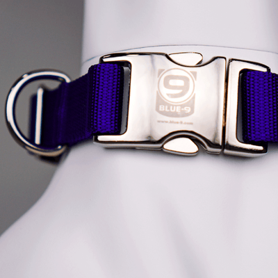 secure pro collar purple
