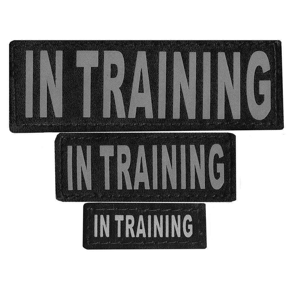 "DOGLine Velcro Patches ""In Training"" 2 Pack - SitStay - 1"