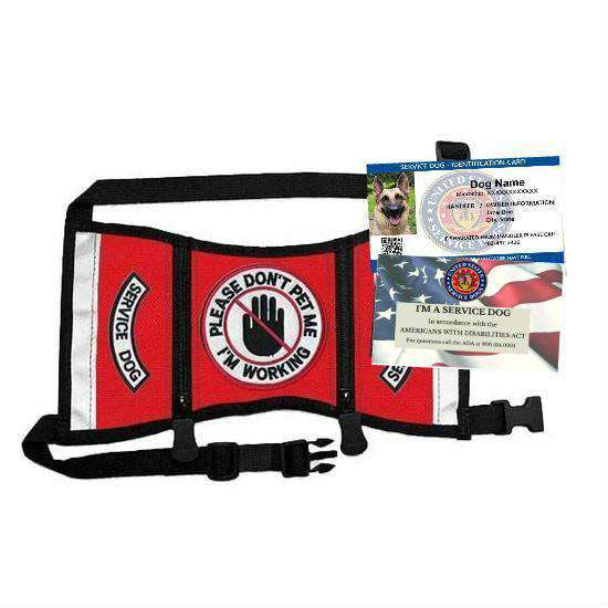 """Do Not Pet Service Dog"" Ready-To-Wear Service Dog Starter Kit"
