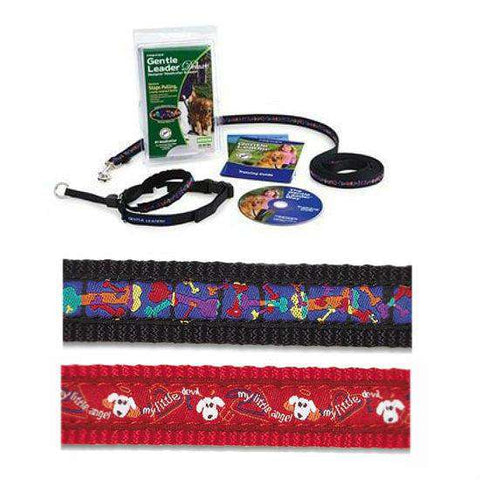 Gentle Leader Deluxe w/ Leash, Small - SitStay