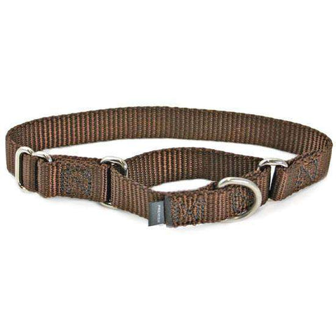 "Premier Martingale Collar (Small, 3/4"") - SitStay - 1"