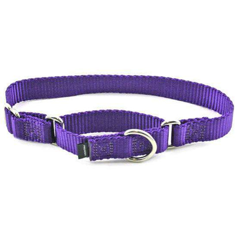 "Premier Martingale Collar (Medium, 1"") - SitStay - 1"