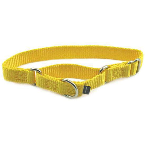 "Premier Martingale Collar (Medium, 3/4"") - SitStay - 1"
