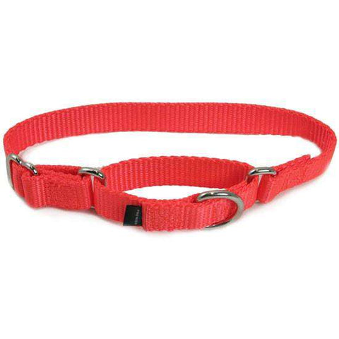 "Premier Martingale Collar (Large, 1"") - SitStay - 1"