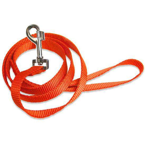 "Premier Heavy Duty Nylon Leash, 1"" X 6ft - SitStay - 1"