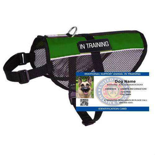 Emotional Support Animal In Training Mesh Vest Starter Kit