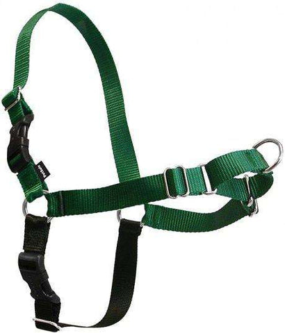 PetSafe Easy Walk Harness,  Green/Black (All Sizes) - SitStay - 1