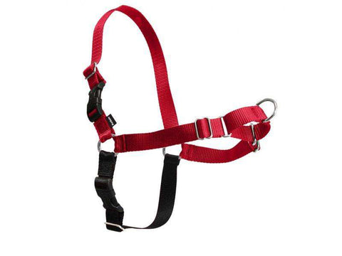 PetSafe Easy Walk Harness, Red/Black (All Sizes) - SitStay - 1
