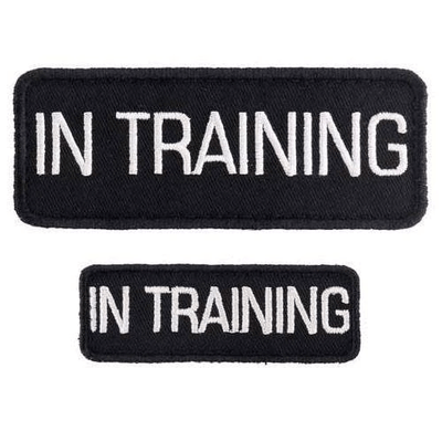 in training patches