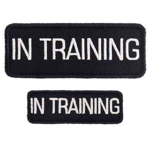 """In Training"" Velcro Patches 2 Pack"