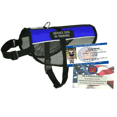 Service Dog In Training Mesh Vest Starter Kit