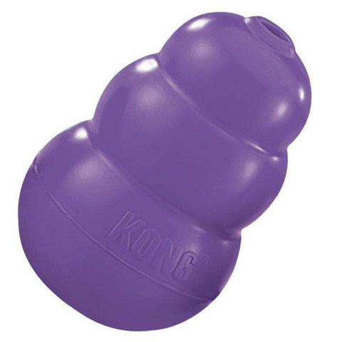 Kong - Senior Dog Toy