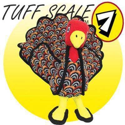 Talulah the Turkey