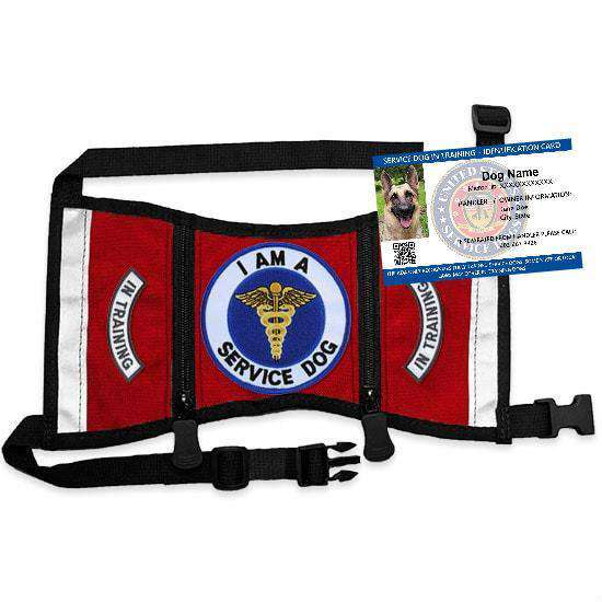 Ready-To-Wear Service Dog In Training Starter Kit