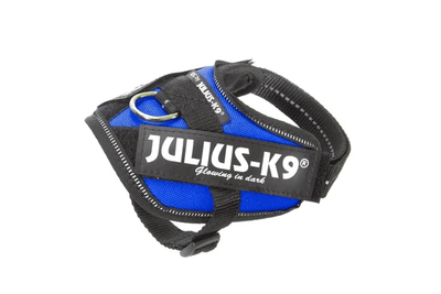 blue powerharness