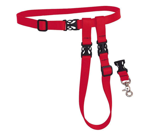 The Buddy System - Hands-Free Leash, Large