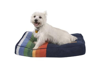 a small white dog laying on a crater lake dog bed