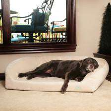 large chocolate lab laying on beige divinity bolster