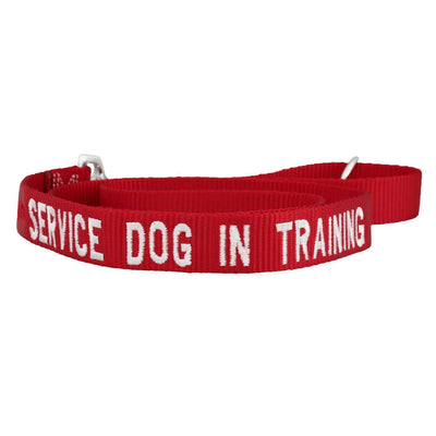 dogIDs Embroidered Service Dog Nylon Leash, 4 FT - SitStay