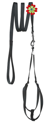 DOGLine Nylon Step-In Harness Flower and Leash Combo - SitStay - 2