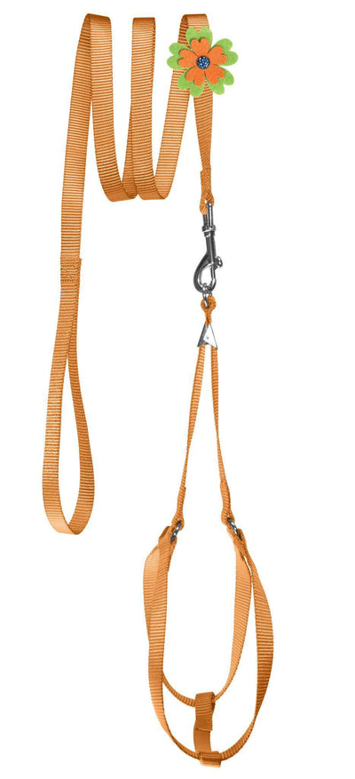 DOGLine Nylon Step-In Harness Flower and Leash Combo - SitStay - 5
