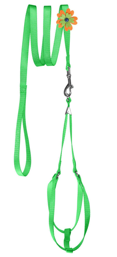 DOGLine Nylon Step-In Harness Flower and Leash Combo - SitStay - 6