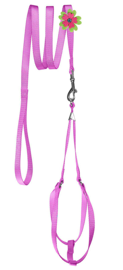 DOGLine Nylon Step-In Harness Flower and Leash Combo - SitStay - 7