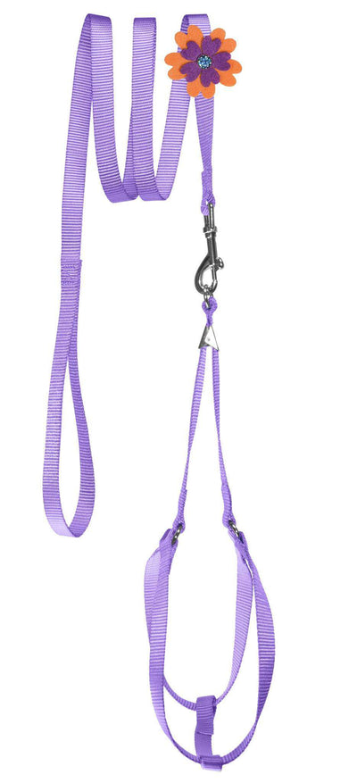 DOGLine Nylon Step-In Harness Flower and Leash Combo - SitStay - 8