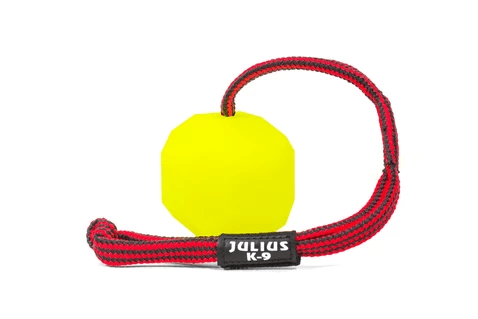 neon fluorescent ball with a red and black rope handle