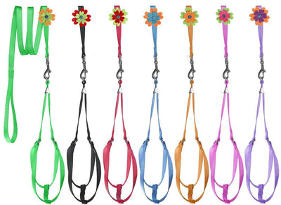 DOGLine Nylon Step-In Harness Flower and Leash Combo - SitStay - 1